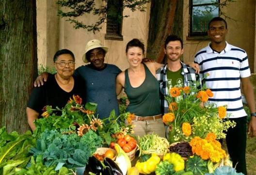 Group Harvest
